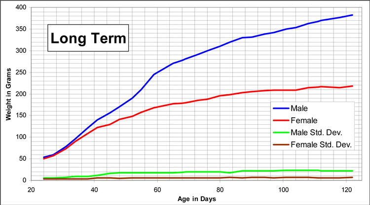 Long Term Growth Charts for Lewis Rats