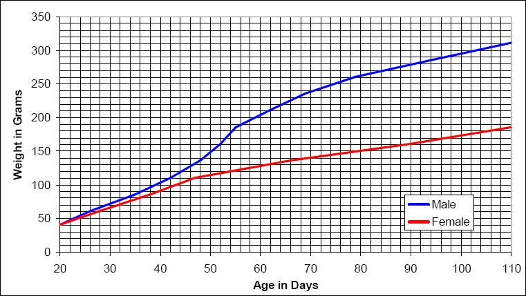 Hilltop Lab Animals Inc Hlashr Growth Chart